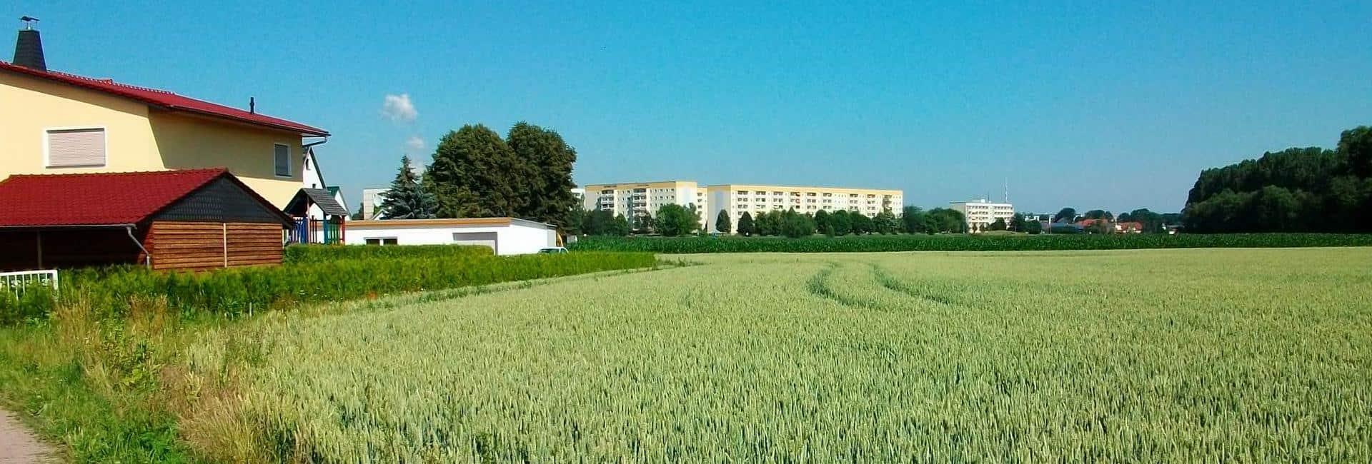 Ortslage Raupenhain (im Hintergrund Stadt Borna)