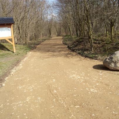 Neuer Forstweg in sandgeschlämmter Schotterdecke